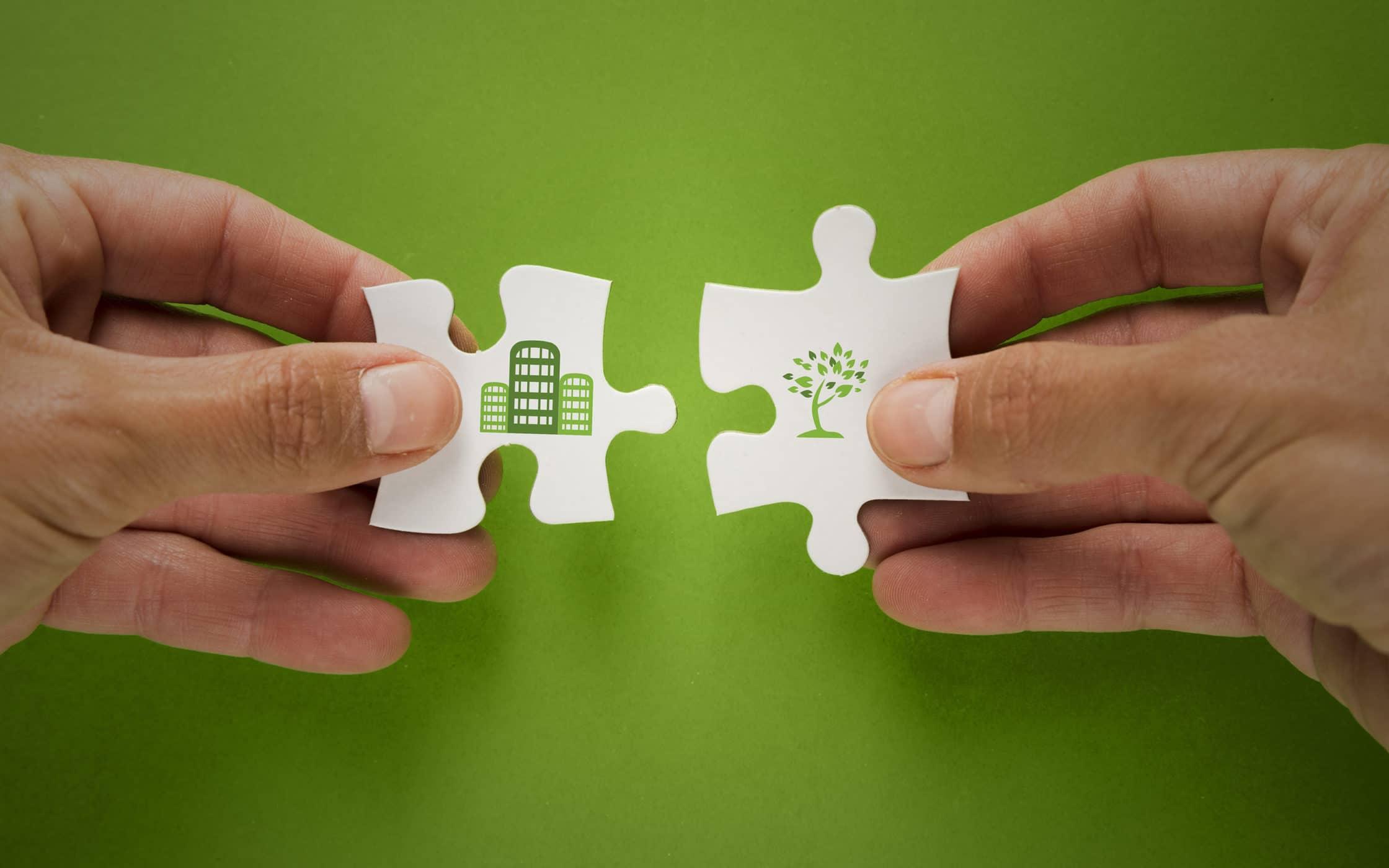 Eco Friendly Companies